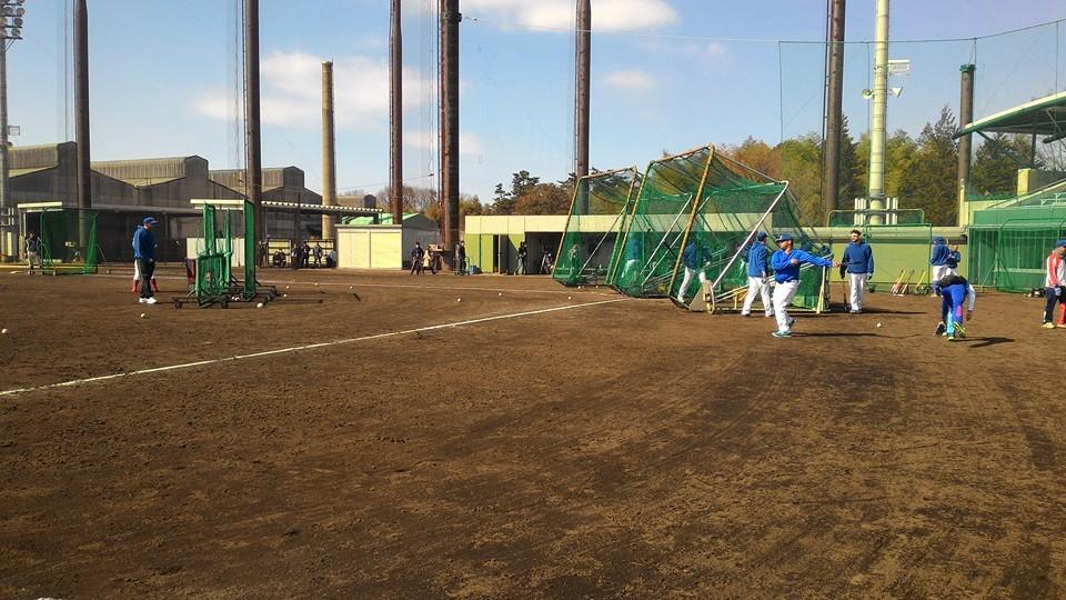 Batting Practice Team Europe